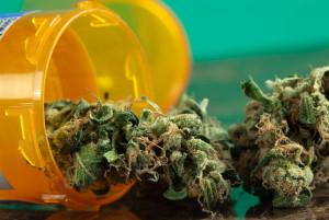 Regulated Substances